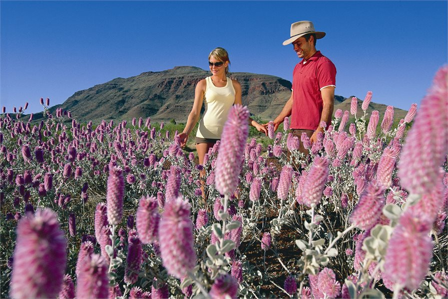 Man and woman in wild flower field Perth Australia
