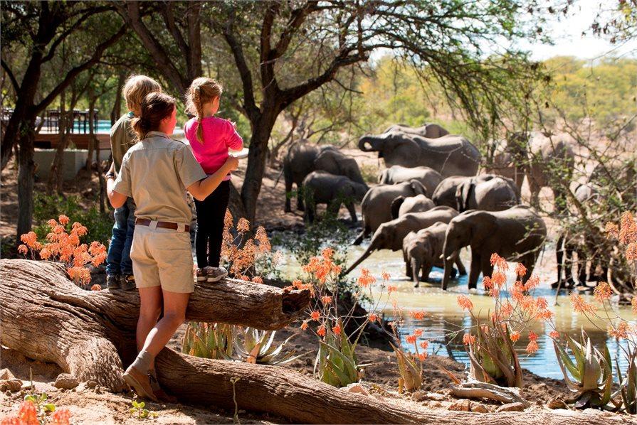 WILDchild programme safari lodges