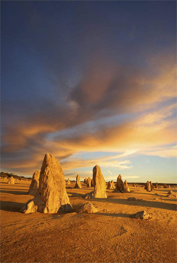 Limestone pillars Pinnacles Desert West Australia