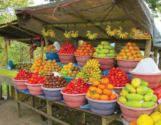 Street side fruit store