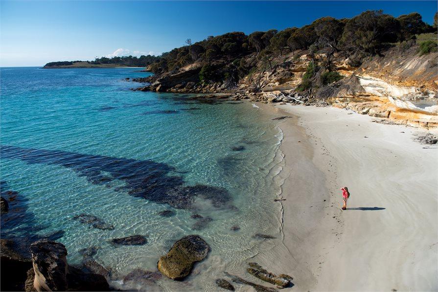 stunning beach found on the Maria Island Walk