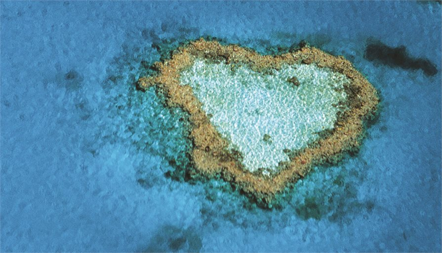 Heart Reef located on the Great Barrier Reef