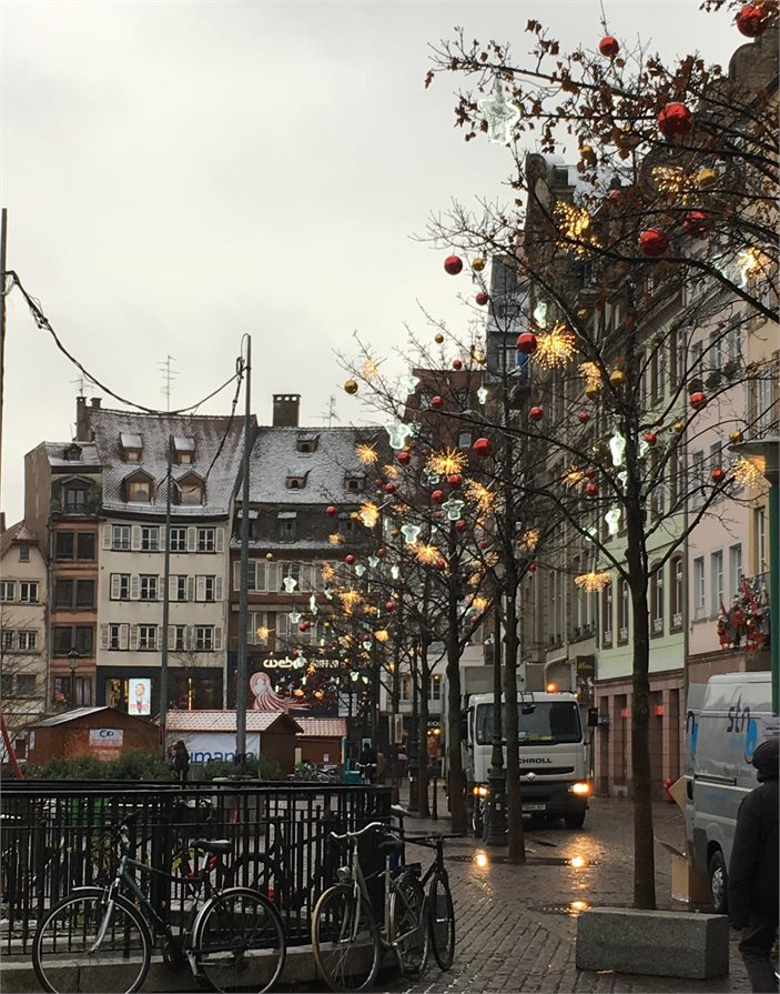 Christmas decorations on trees Strasbourg France
