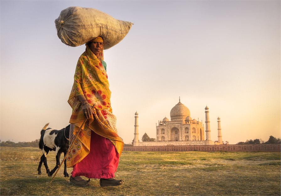India man with Goat Taj Mahal
