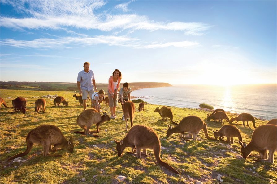 Family fun on Kangaroo Island