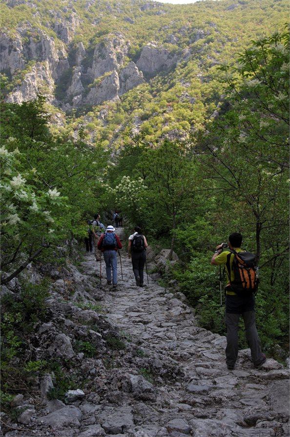 Hiking Croatia's Coasts and Canyons