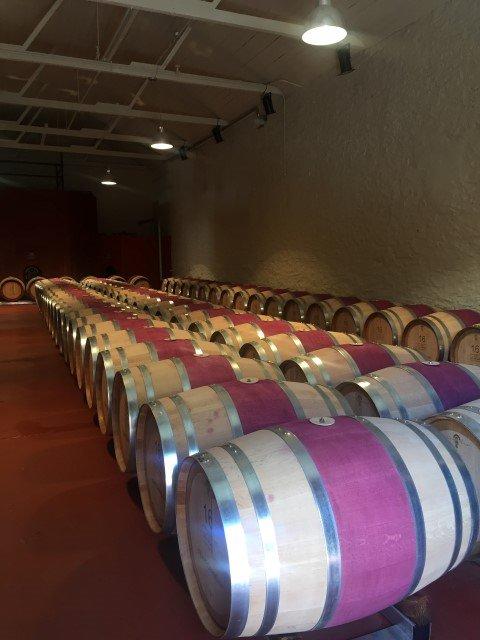 Wine barrels at the Penfolds Magill Estate