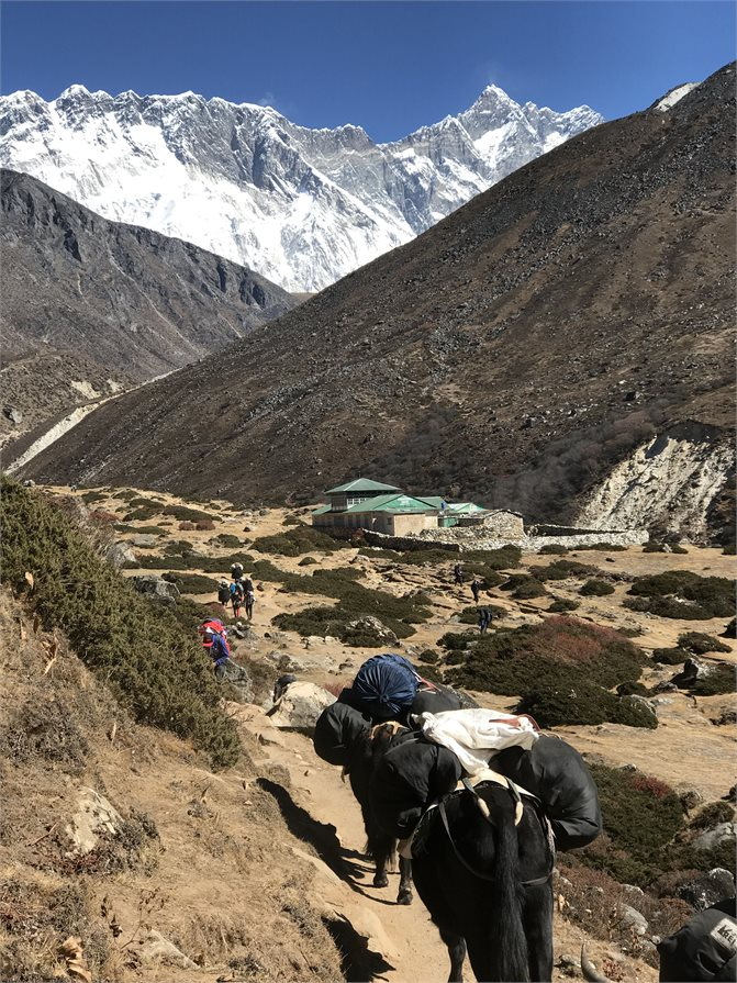 Trekking through to Base Camp