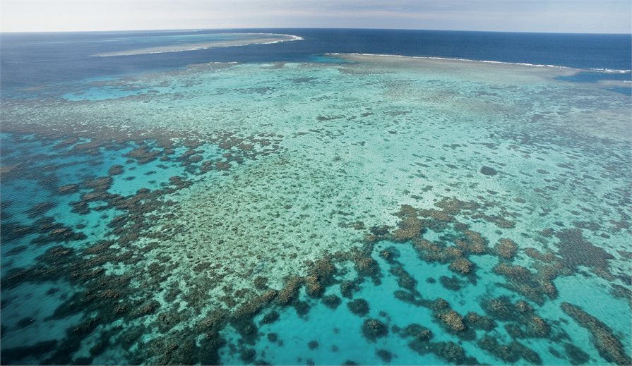 View of the Great Barrier Reef